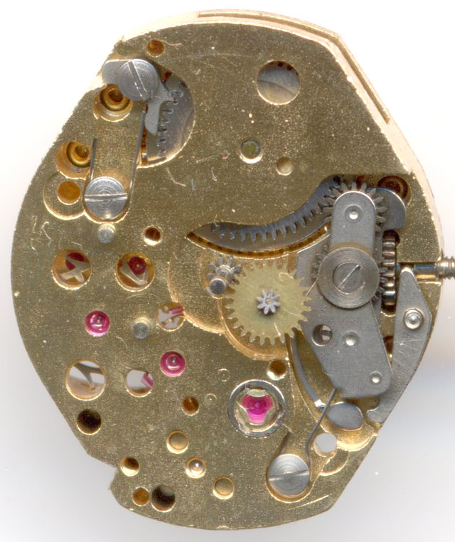 dial view without date mechanism